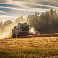 Asesoramiento sector agrario